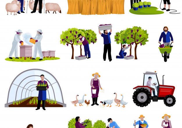Perspectiva agroexportadora y políticas en espera