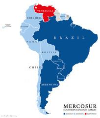Treinta años del Mercosur: desacople entre la Argentina y Brasil y riesgos para la integración