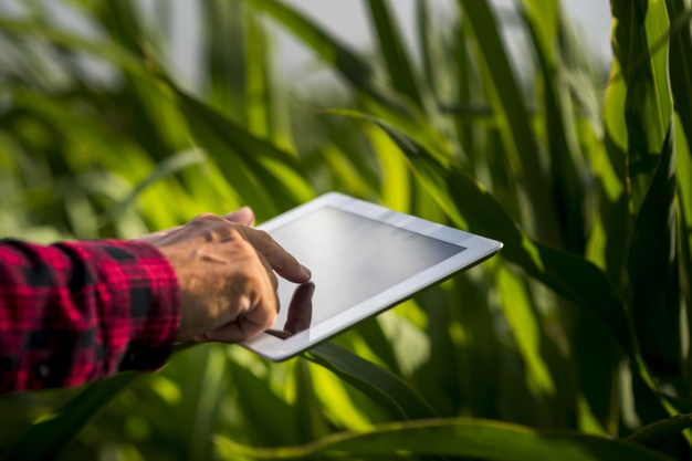 La agroindustria fue protagonista en el primer trimestre de 2021