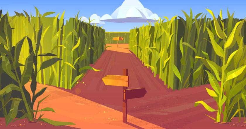 La riqueza agropecuaria argentina: un país en su laberinto